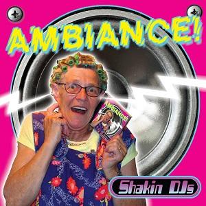 SHAKIN' DJ'S - AMBIANCE